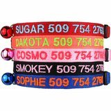 GoTags Custom Embroidered Cat Id Collars with Breakaway Safety Release Buckle